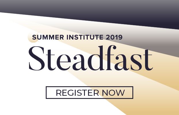 The Summer Institute 2019 banner